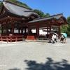 夏休みで家族旅行で江ノ島と鎌倉を回ったよ!鶴岡八幡宮と銭洗弁財天宇賀福神社 編