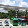 ● 恐るべし中国の電気自動車普及率! 虎視眈々と日本を狙うEV路線バスの脅威