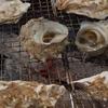 #糸島牡蠣小屋 今シーズン2回目は「糸島焼き #牡蠣小屋のぶりん 」さんへ行ってきました | YouTube