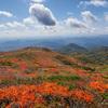 憧れの東北・栗駒山の紅葉、素晴らしかったけど初体験レベルの混雑にも驚いた
