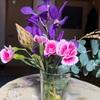 お花のサブスクbloomee  5ヶ月経過しての感想