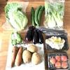 料理の時間を短縮する野菜の下処理