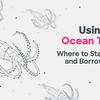 OCEANトークンの運用方法一覧