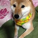 JunchanObachanのブログ