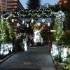 12月の四季の香ローズガーデンに行ってきました