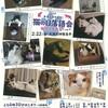 大阪■2/22(金)■猫の日落語会