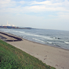 《11.3.11》被災地東北、18次<巡訪>/ ➈3日目(5)仙台、蒲生干潟探し        今回のテーマ「つぎのステップにむけて」