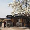 新羅の古都 慶州と仏国寺