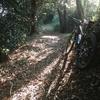 大楠山トレイルへ 子供達の自転車購入