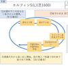 2020/04/12(日) 桜花賞(G1) 有力馬紹介 デアリングタクト