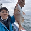 海老で鯛を釣る(テンヤ漁)
