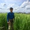 2019年稲刈りの援農募集