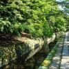 【銀閣寺から散策】哲学の道で必ず寄りたいお土産&和カフェ