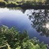 久々の手賀沼水系、秋のバス釣り釣果!