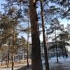 【ロシア】シベリアの街の風景の写真 ウランウデ
