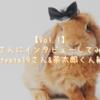 【Vol.1】うさ飼いさんにインタビューしてみました!(@tyata19さん&茶太郎くん編)
