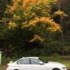 BMW320dが代車です!アルピンホワイトⅢのスポーツライン!