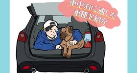 車中泊に適した車種とは?車と場所選びから快適に過ごす方法もご紹介