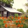 貯金ゼロ23歳女性が、庭つき一軒家に住むことができました【北海道移住】【空き家】