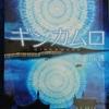 『ギンカムロ』夜空を覆う銀色の雨【美奈川護】