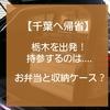 【千葉へ帰省】栃木を出発!持参するのは、お弁当と収納ケース?