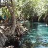 タンザニア  ~モシ そこには綺麗な泉があった!~