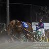日本でも「北海道帯広市だけしか見れないレース」それは「ばんえい競馬」である!