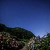 【天体撮影記 第134夜】 佐賀県 中木庭ダムの紫陽花と星空