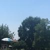 気温37度❢ジュネーブの夏