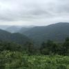 【カオヤイ旅行】世界自然遺産カオヤイ国立公園(KhaoYai National Park)@ナコンラーチャシーマー県
