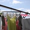 今すぐできる夏の洗濯物の虫対策!!虫のふんの対処方法とは!?