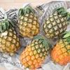 【ふるさと納税】野菜・果物③とっても甘くてジューシー☆夏にぴったりパイナップル! 鹿児島県鹿屋市
