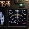 Training for First Officer w/ Flight Simulator
