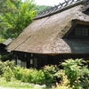 【富士山・西湖】いやしの里根場に行ってきました・・・のお話。