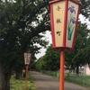 【長岡市・与板】菖蒲を見に行きました^^