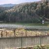 大池下池(長野県千曲)