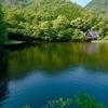 松尾池(岐阜県岐阜)