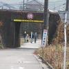 登校の風景:線路下トンネル、梅の開花