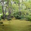京都 観光スポット(6) 嵐山 大河内山荘