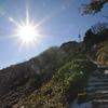 和宏さんと初詣遊山 山小屋
