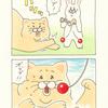 ネコノヒー「けん玉3」/ Kendama