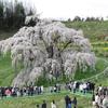 2017-04-23 三春滝桜ライドツーリング! ポタライド編