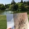 佐倉①ーDIC川村記念美術館〈ヴォルスー路上から宇宙へ〉展