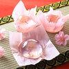 ゼリーの中にふんわり桜が咲いている春らしいゼリー登場✿