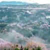 雲間の吉野山