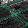 自動運転の地図、ベクターマップについて