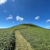 初心者向けロングトレイル『中央分水嶺トレイル』を3日間で歩いたHIKELOG