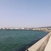 一日一撮 vol.580 瀬戸内海を眺める