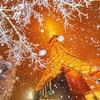 東京では雪が降るみたいですね