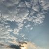 今日の沖縄北部の天気はくもり時々雨(令和2年1月16日)